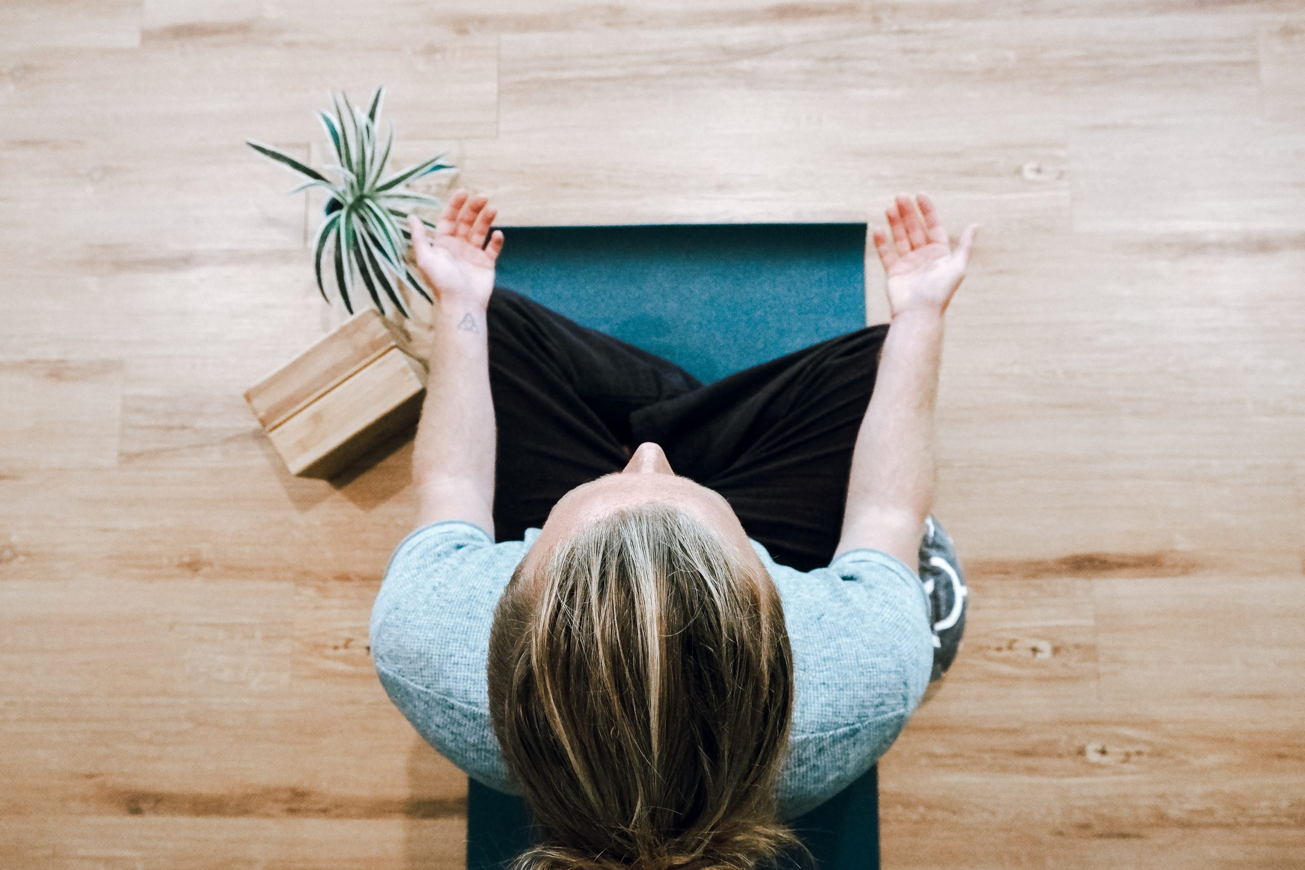 Working with Mindfulness 1-Day Course